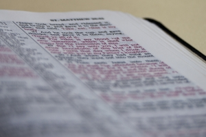 The Life-Changing Power of God's Word {Guest Post}