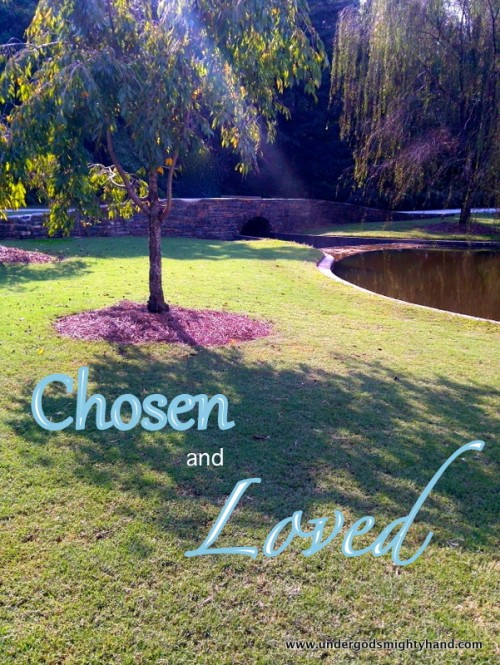 chosen and loved - sun tree pond