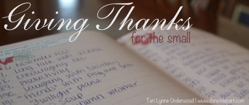 Giving Thanks for the small by Teri Lynne Underwood www.donotdepart.com