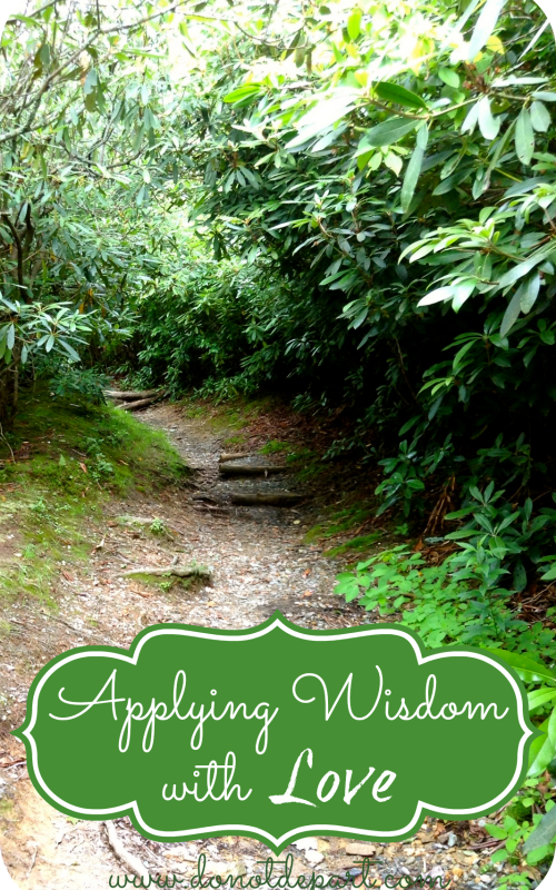 Applying Wisdom With Love {Rather than Legalistic Law}