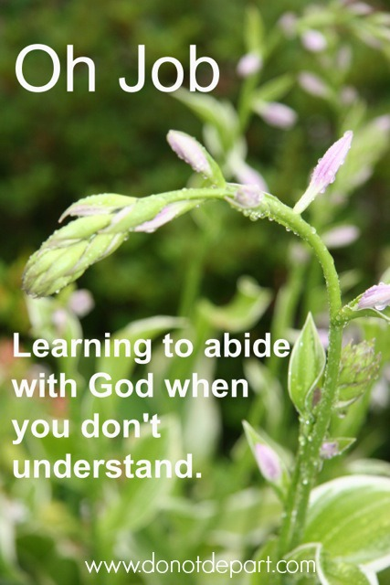 Oh, Job {Learning to Abide with God When You Don't Understand}