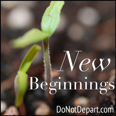 New Beginnings Series - donotdepart.com