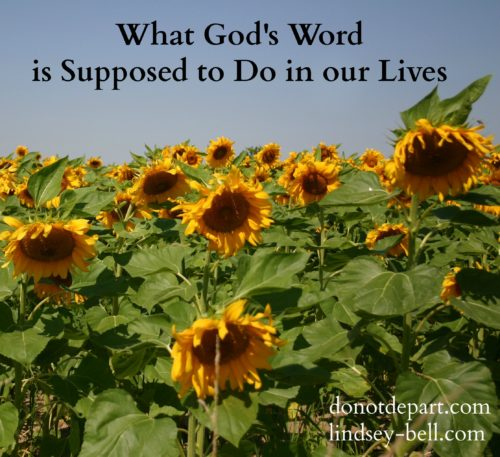 What God's Word is Supposed to Do In Our Lives