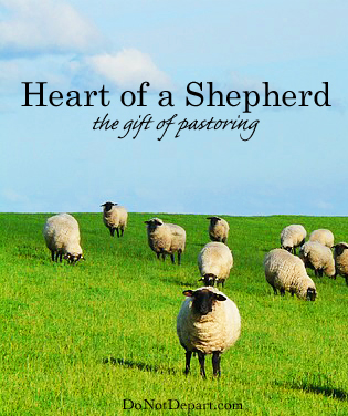 Heart of a Shepherd - the gift of pastoring