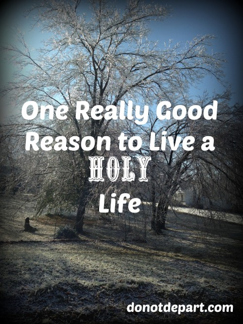 One Really Good Reason to Live a Holy Life