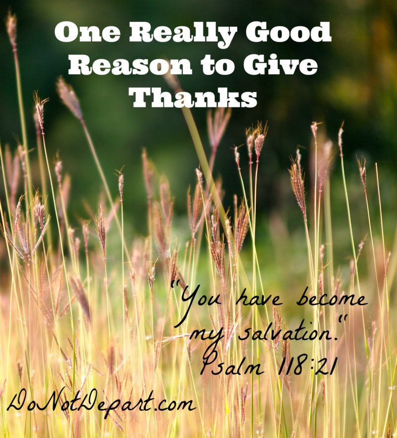 One Really Good Reason to Give Thanks - Do Not Depart