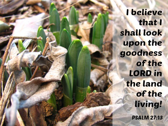 Believe you'll see it – Psalm 27:13 {Memory verse}