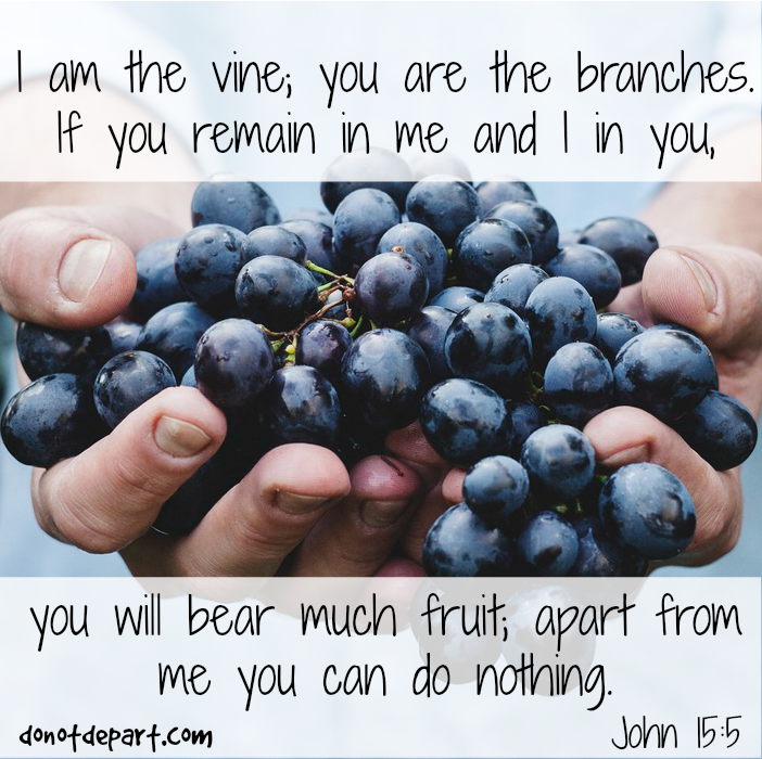 I am the Vine – John 15:5