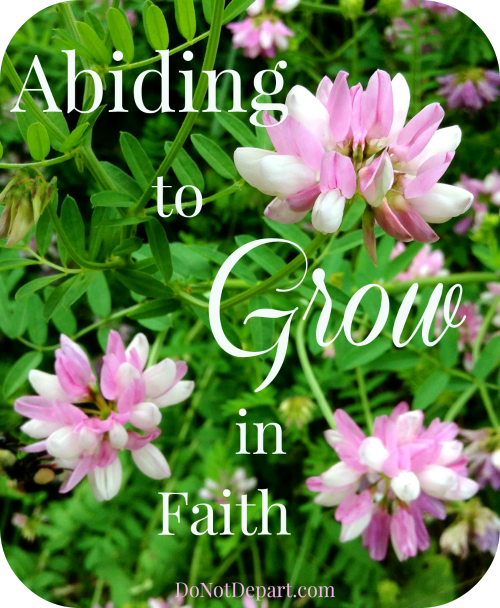 Abiding to Grow {in faith}