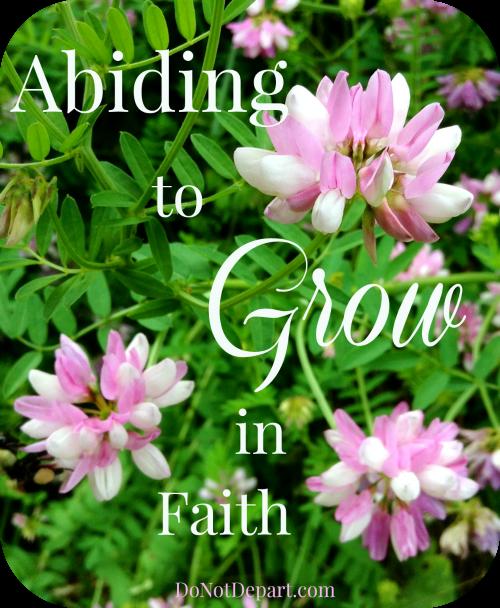 Abiding to Grow {in faith} - DoNotDepart.com