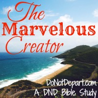 The Marvelous Creator - A Summertime Bible study from DoNotDepart.com