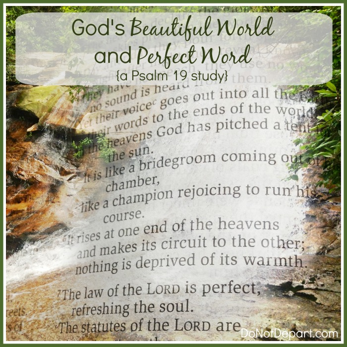 God's Beautiful World and Perfect Word {a Psalm 19 study}