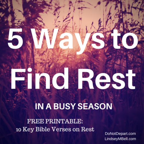 Trying to find rest in a busy season? These tips can help! Plus, there's a free printable