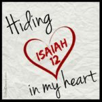 Hiding-Isaiah-12