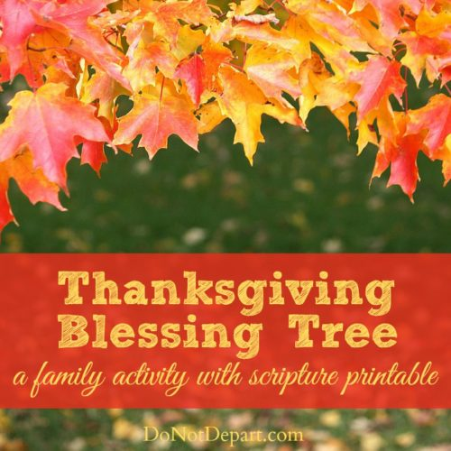 Make a Thanksgiving Blessing Tree with your family this year! Count your blessings around the table and create a unique holiday decoration at the same time!