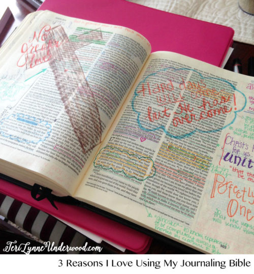 Journaling-Bible-Teri-Lynne-Underwood