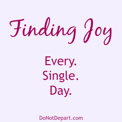 Finding Joy | Every. Single. Day.