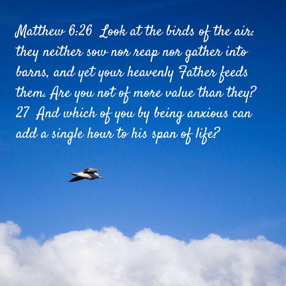 Matthew-6-26-67