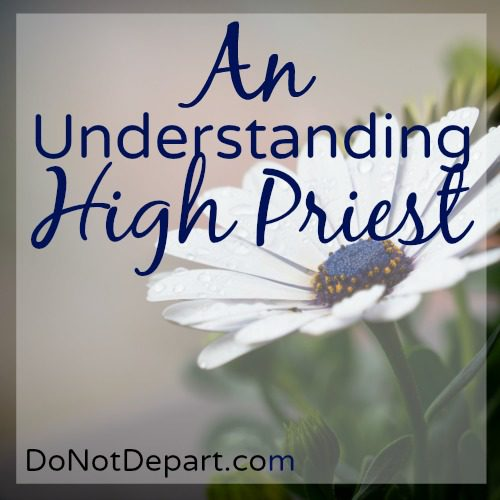 Jesus As High Priest... An Understanding High Priest... Read more and study Hebrews 5 at DoNotDepart.com
