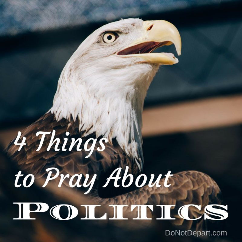 4 Things to Pray About Politics
