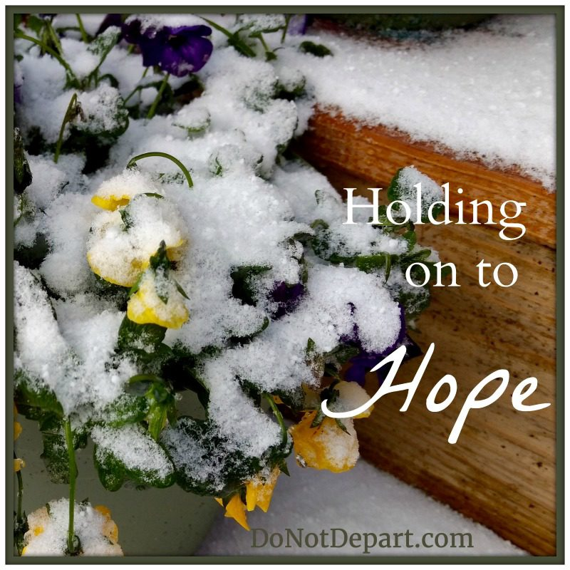 Holding on to Hope - DoNotDepart.com