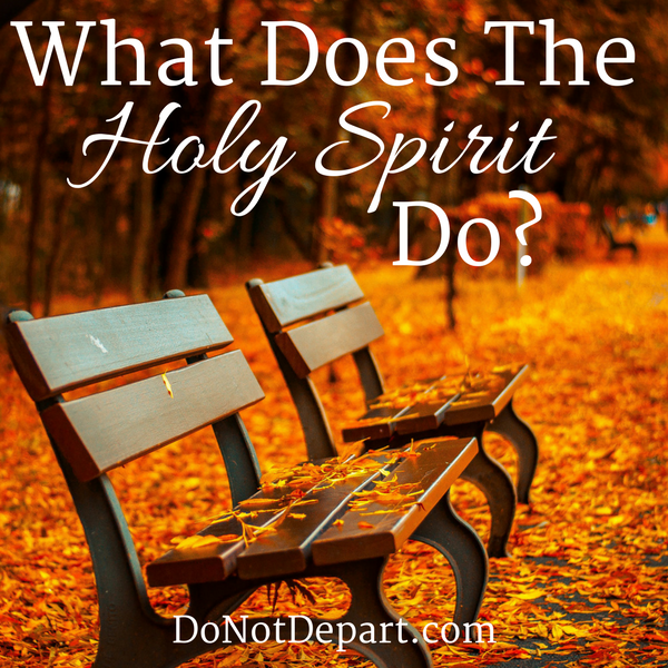 2 Roles of the Holy Spirit from Romans 8