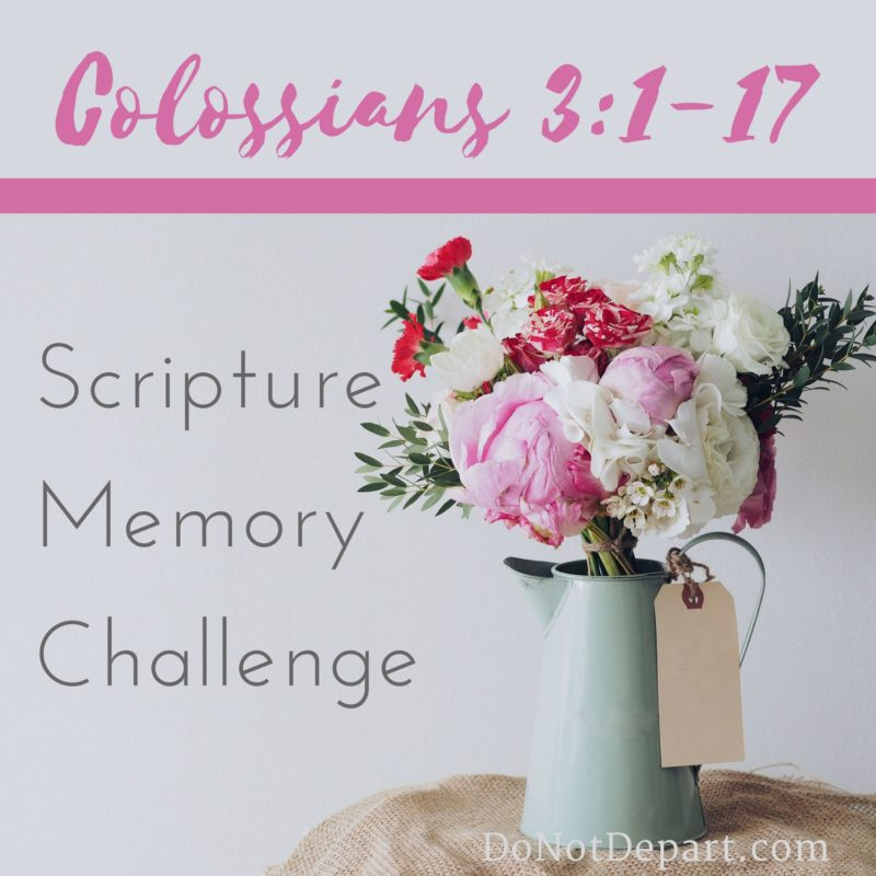 Sign Up Now – Memorize Colossians 3:1-17 (Group A or B)
