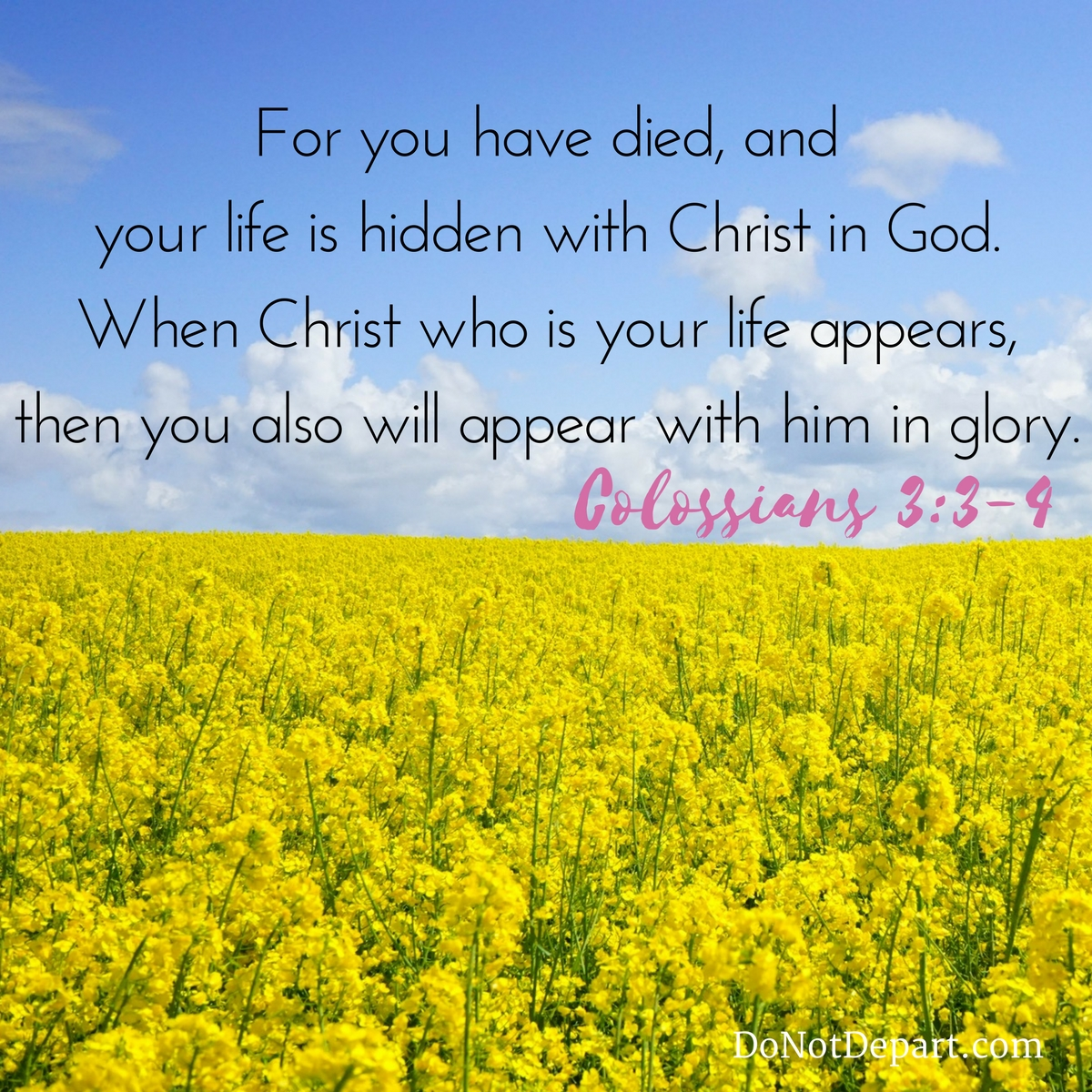 Back to Life {Memorizing Colossians 3:3-4}