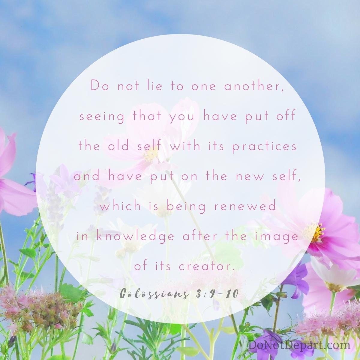 Made Fresh Daily {Memorizing Colossians 3:9-10}