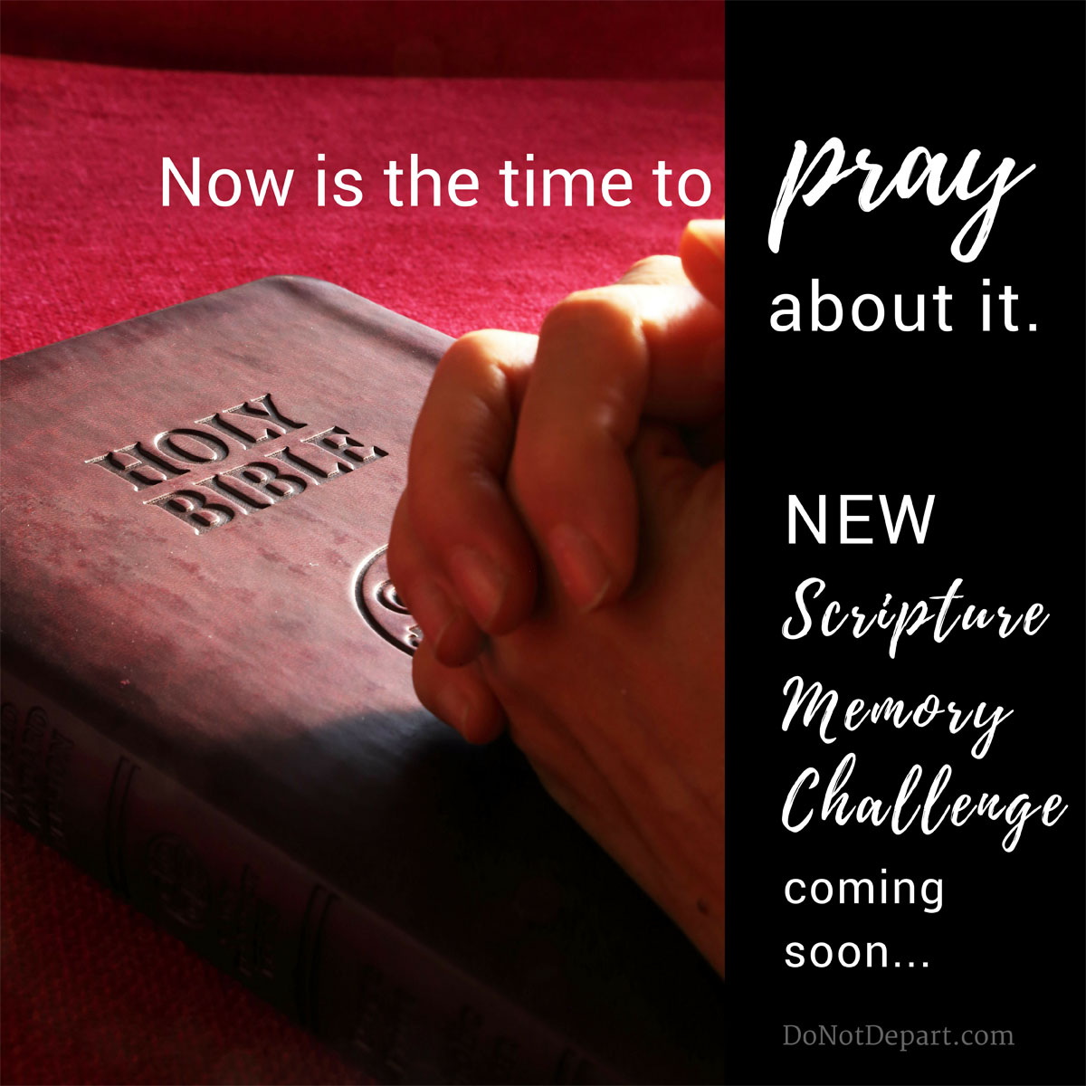 New Scripture Memory Challenge Coming Soon