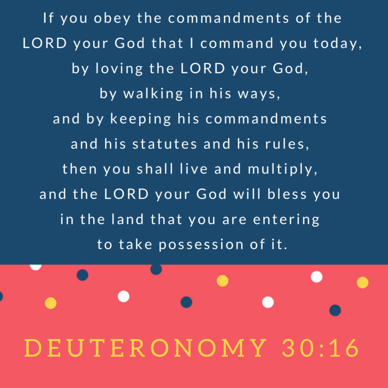 If You – Memorize Deuteronomy 30:16