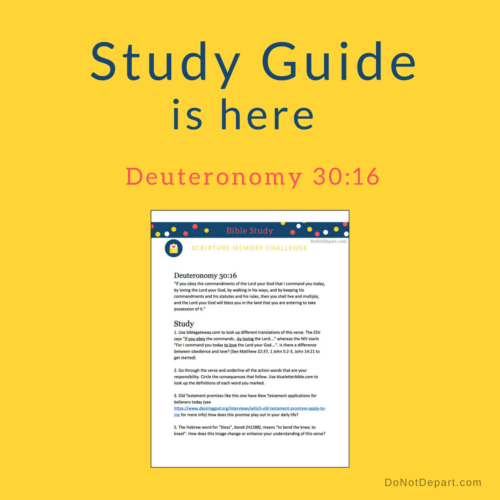 Study Guide for Deuteronomy 30_16-DND