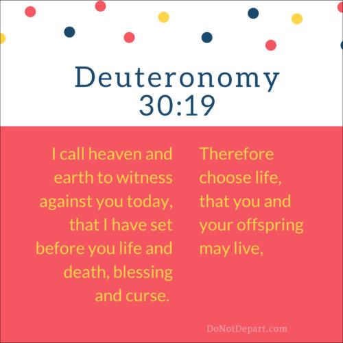 Deuteronomy-30-19