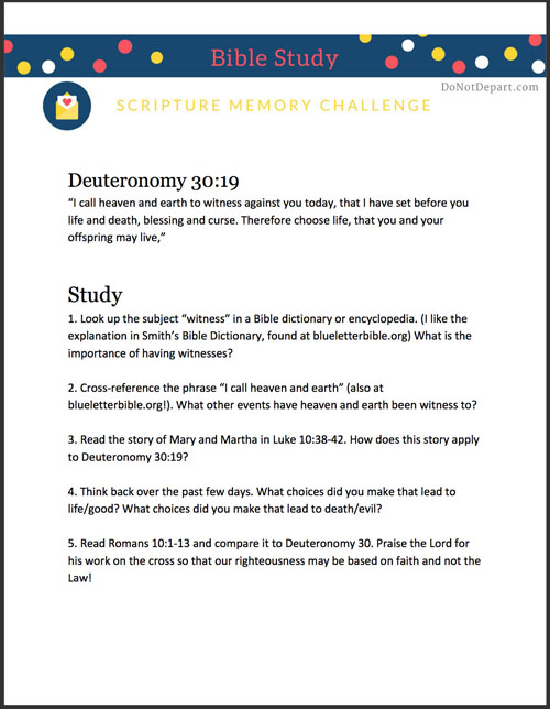 Study-Guide-v19